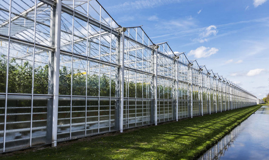 How does the automatic greenhouse control system help the greenhouse to achieve intelligence ...