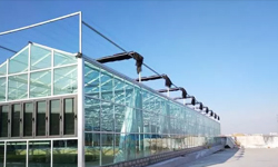 What is the height of a greenhouse? What's the right height